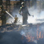 slash and burn: how to keep your copy concise