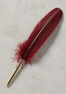 turkey feather pen